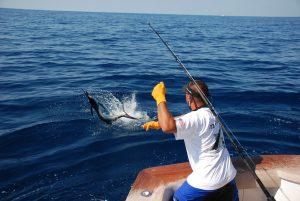 Pesca Deportiva en Mazatlán y Cancún / Riviera Maya